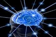 """""""Весь мир у нас в голове"""", харьков, хатха-йога, йога, йога-студия, йога 23, yoga23, yoga 23, цигун, илицюань, массаж, пилатес, танцы, трайбл, дом солнца, медитация, индивидуальные, занятия, тренировки, лфк, для детей"""