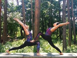 Друзья,  25 ноября состоится занятие - парная йога. Приходите!, харьков, хатха-йога, йога, йога-студия, йога 23, yoga23, yoga 23, цигун, илицюань, массаж, пилатес, танцы, трайбл, дом солнца, медитация, индивидуальные, занятия, тренировки, лфк, для детей